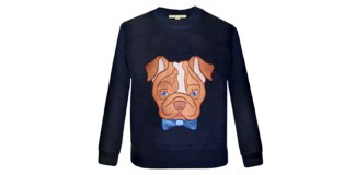 Brian the bulldog jumper