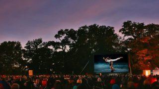 bradgate park cinema