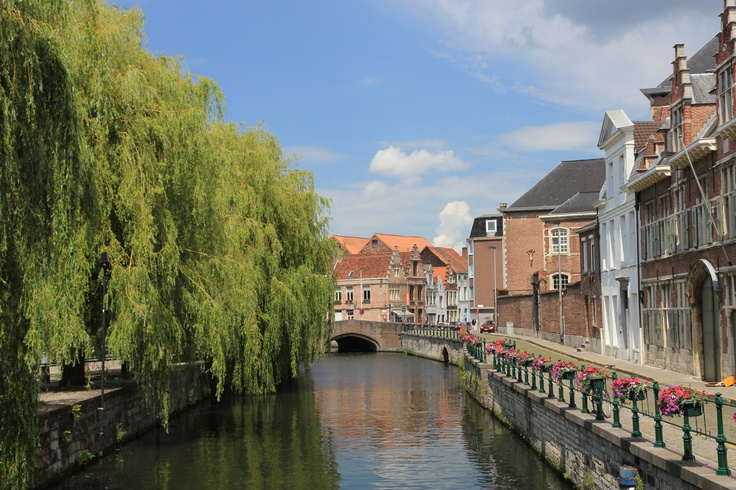 ghent kissing tree