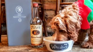 Tito's vodka dog